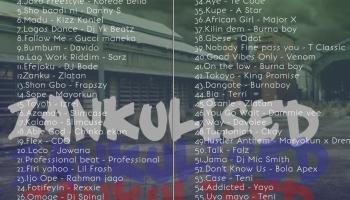 Download Dangote By Burna boy Mp3 – Gbeduplus